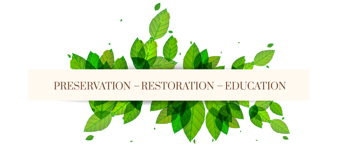 Preservation Restoration Education
