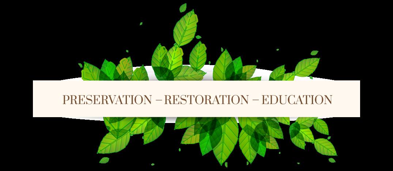 Preservation Restoration Education